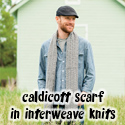 Caldicott Scarf, in Interweave Knits Holiday Gifts 2013